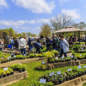 Gartenmarkt | BlumenLust und FrühlingsDuft