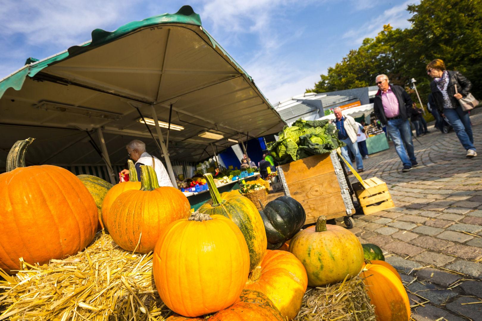 Bild zur Veranstaltung Herbstmarkt Land und Leute